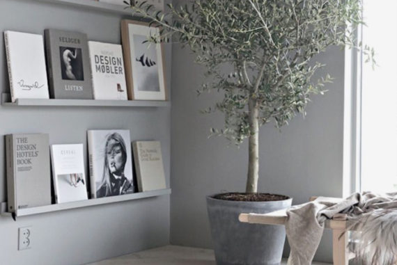 Rørig Dekoration til hjemmet - Find inspiration til bolig og dekoration her QE-65