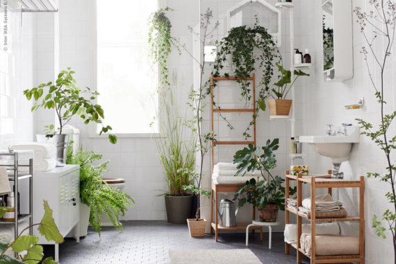 Planter til badeværelset -