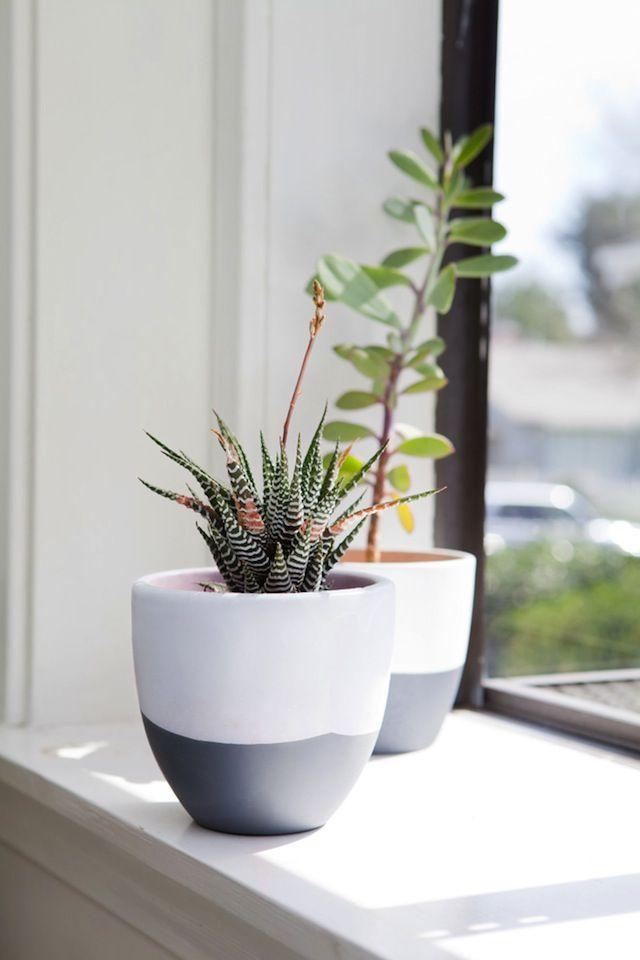 Altomindretning_indretning potteplanter_3