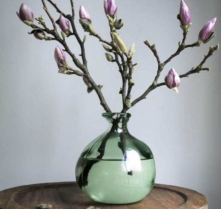 afskårne grene_magnolia_altomindretning