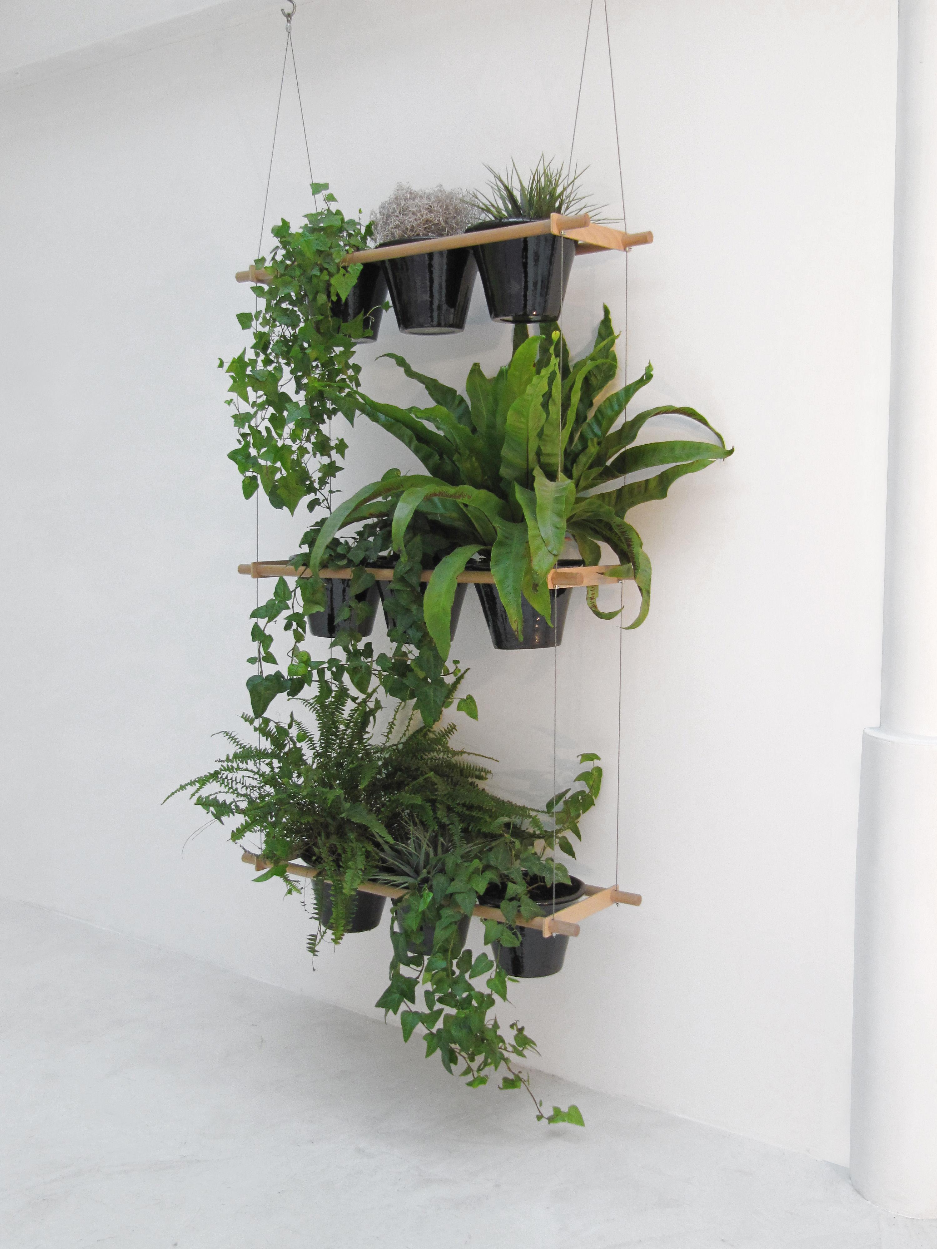 Grønne oaser til altanen eller terrassen