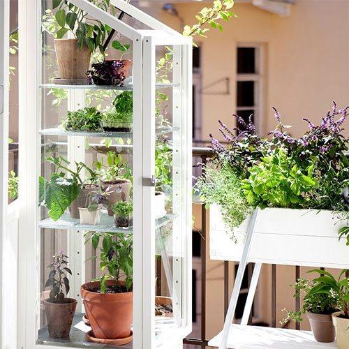Grønne oaser til altanen eller terrassen -